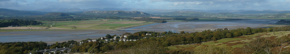 morecambe bay wildlife network